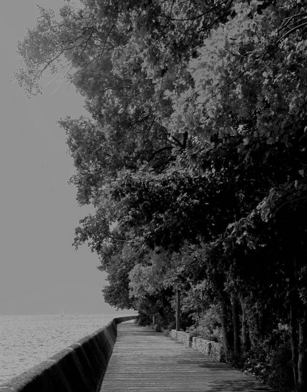 Black And White Art Print featuring the photograph Boardwalk by Ian MacDonald
