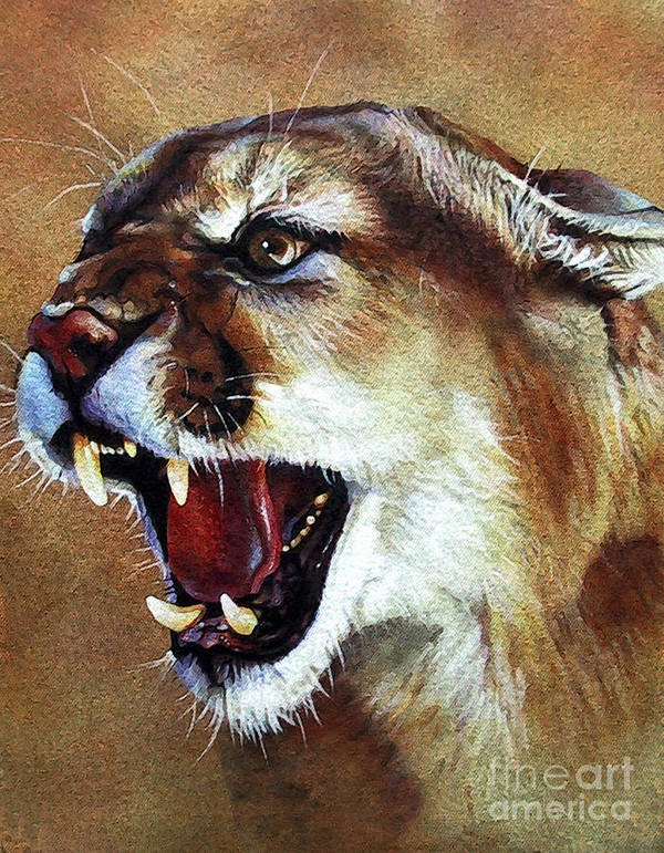 Southwest Art Art Print featuring the painting Cougar by J W Baker