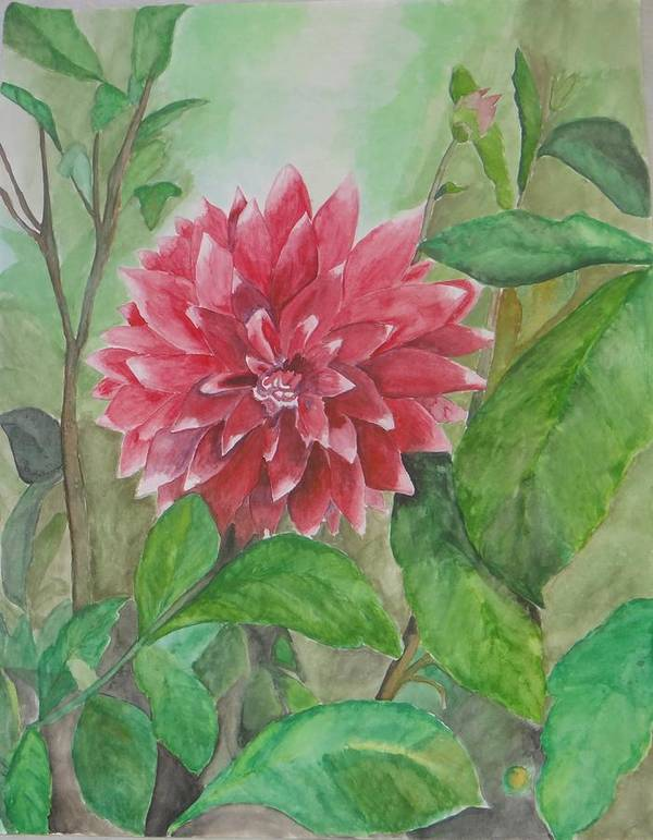 Flowers Blooming In Dehradun Valley Art Print featuring the painting Dahlia Flower Grown In Apartment Garden by Saloni Verma