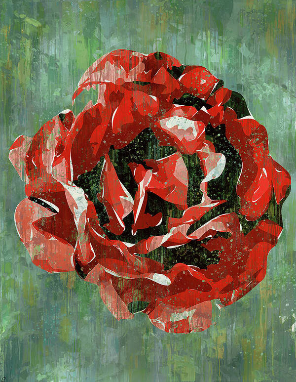 Flower Art Print featuring the digital art Dripping Poster Rose On Green by Yury Malkov