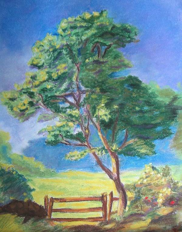 Tree Art Print featuring the pastel Guarding The Field by Diane Larcheveque