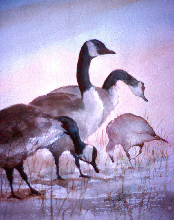 Geese Art Print featuring the painting Late Supper by Ken Marsden