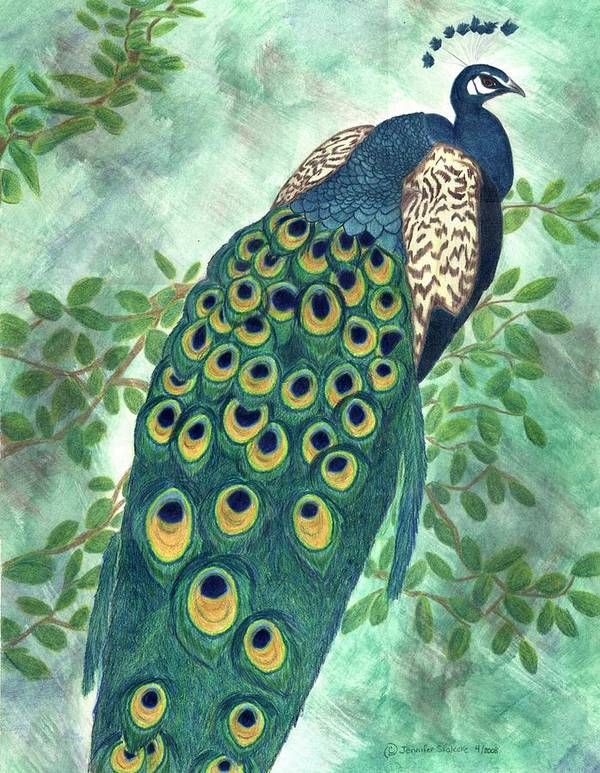 Peacock Art Print featuring the drawing Majestic by Jennifer Skalecke