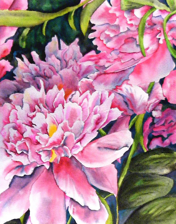 Peony Art Print featuring the painting Peony In Pink by Diane Ziemski