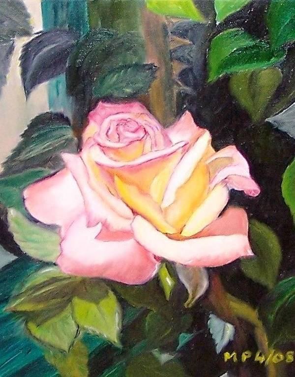 Floral Art Print featuring the painting Pink Rose by Madeleine Prochazka