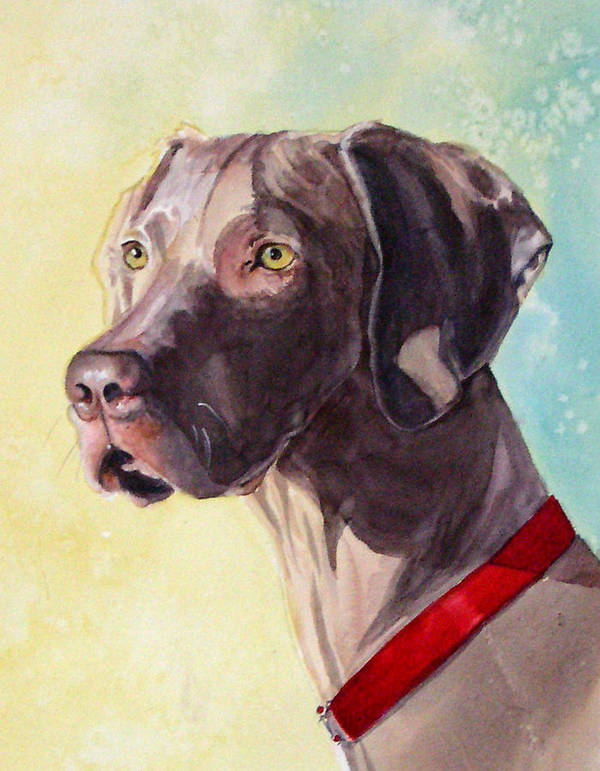 Canine Art Print featuring the painting Quelly by Gina Hall