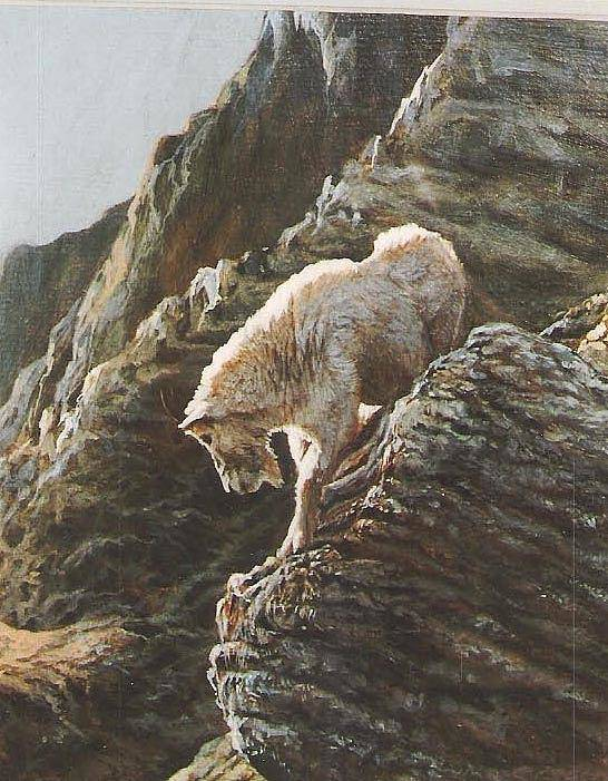 Goat Art Print featuring the painting Rocky Mountain Goat by Steve Greco
