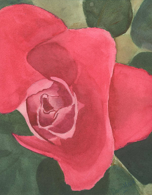 Rose Art Print featuring the painting Rose by Dawn Marie Black
