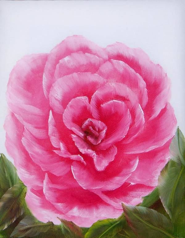 Oil Art Print featuring the painting Rose by Joni McPherson