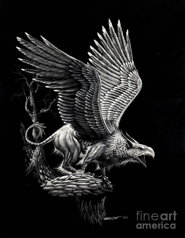 Griffon Art Print featuring the drawing Screaming Griffon by Stanley Morrison