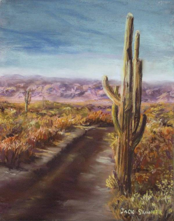 Desert Art Print featuring the painting Southern Arizona by Jack Skinner