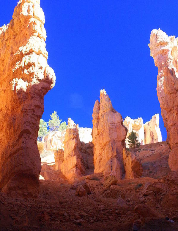 Bryce Canyon National Park Art Print featuring the photograph Spires by Marty Koch