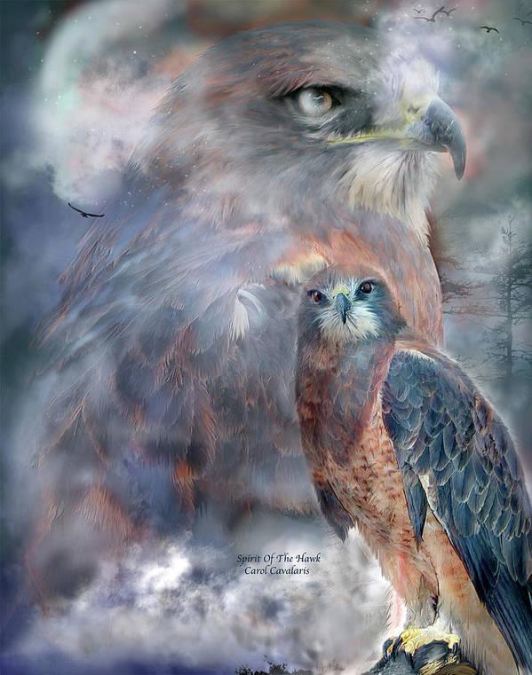 Hawk Art Print featuring the mixed media Spirit Of The Hawk by Carol Cavalaris