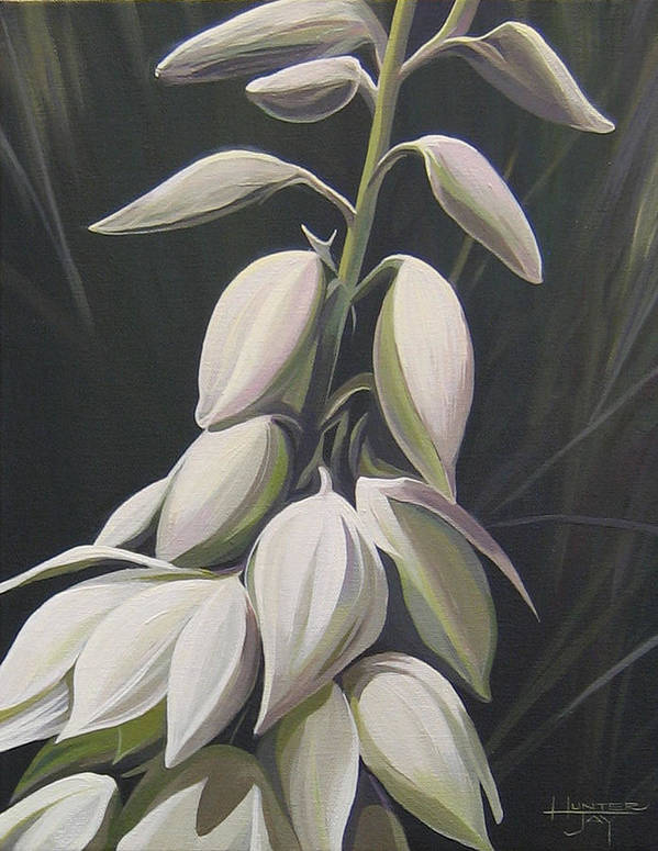 Yucca Plant Art Print featuring the painting Summersilver by Hunter Jay