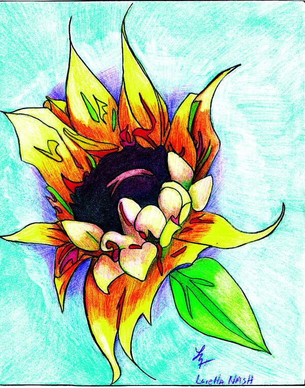 Sunflower Art Print featuring the drawing Sunflower by Loretta Nash