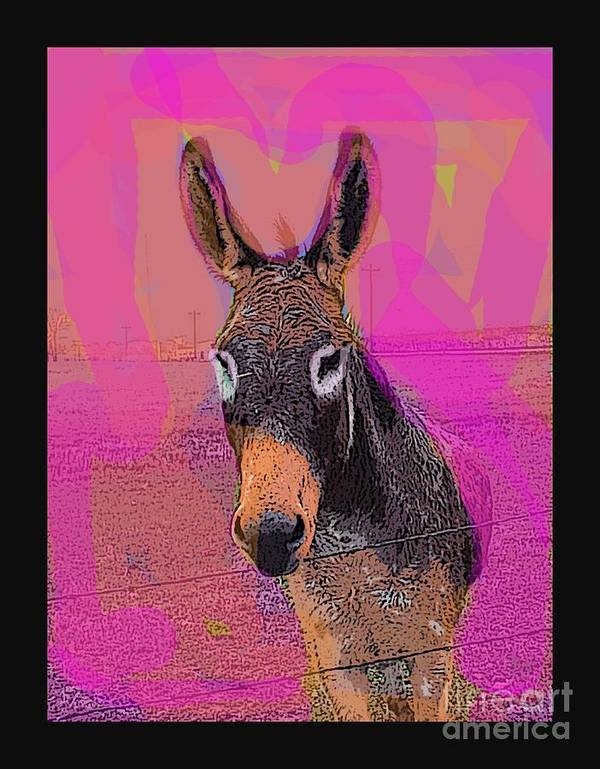Donkey Art Print featuring the photograph Tequillia by David Carter