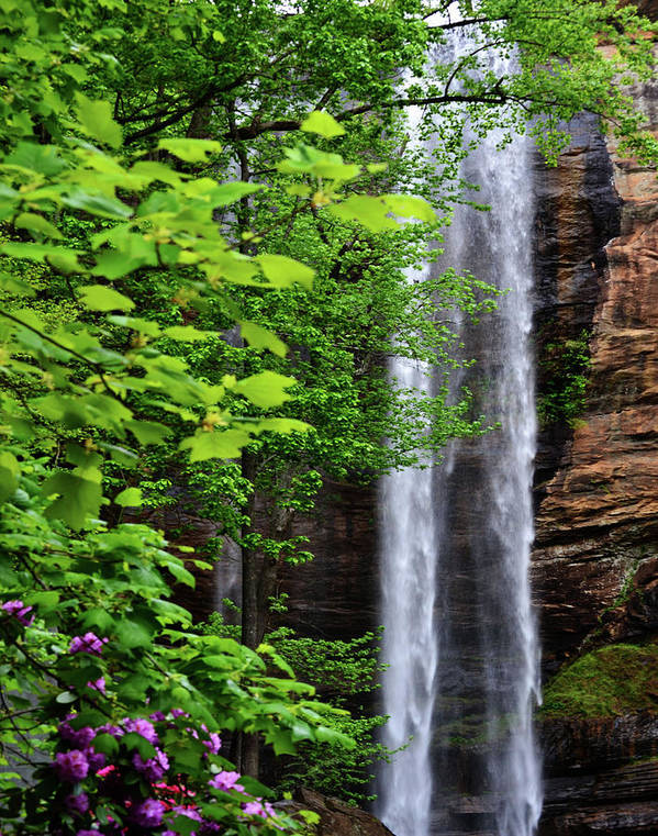 Waterfall Art Print featuring the photograph Toccoa Falls In Georgia by Eva Thomas