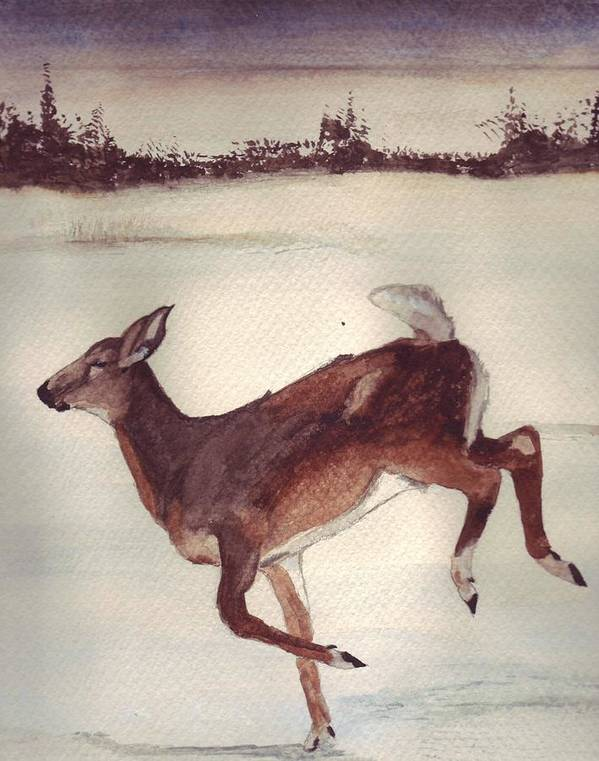 Whitetail Deer Art Print featuring the painting Twilight Run by Debra Sandstrom
