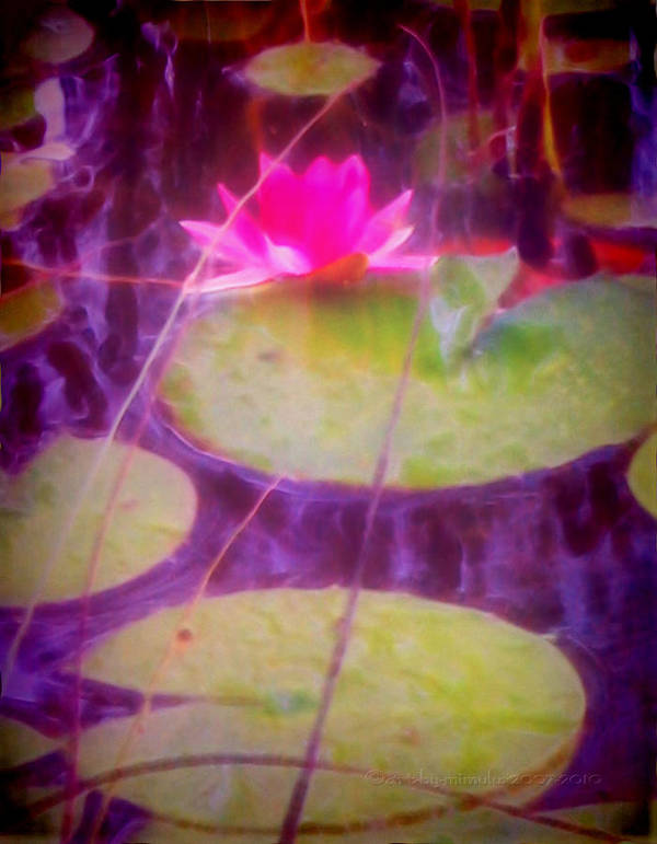 Waterlily Art Print featuring the digital art Waterlily by Mimulux patricia No