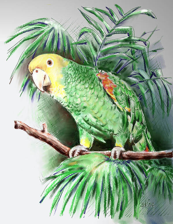 Bird Art Print featuring the digital art Yellow-headed Amazon Parrot by Arline Wagner