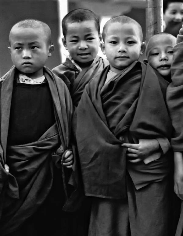 Buddhism Art Print featuring the photograph Young Monks II Bw by Steve Harrington