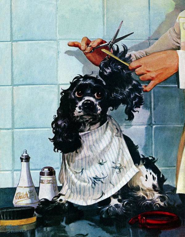 Barbers Art Print featuring the drawing Butch's Haircut by Albert Staehle
