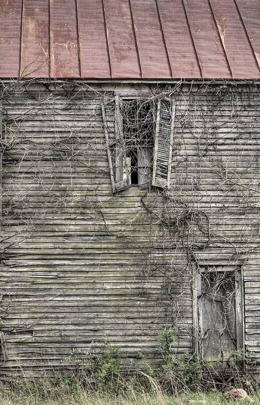 The Window Up Above Art Print featuring the photograph The Window Up Above by JC Findley