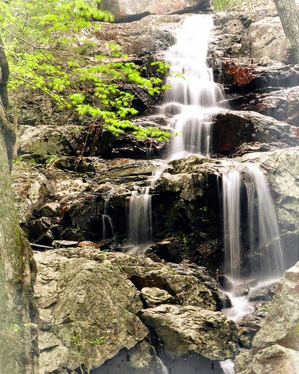 Waterfall Art Print featuring the photograph 1201 by Marty Koch