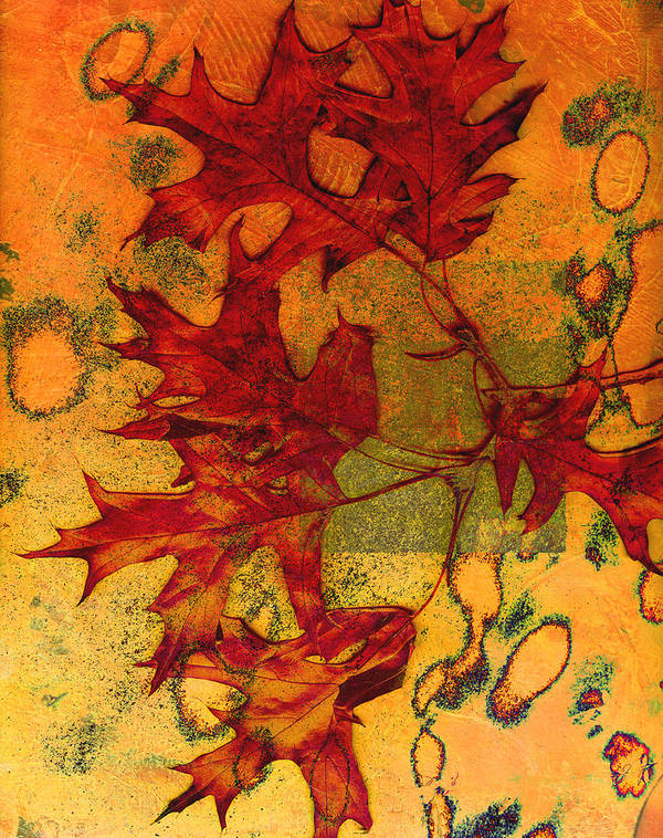 Autumn Leaves Art Print featuring the photograph Autumn Leaves by Ann Powell