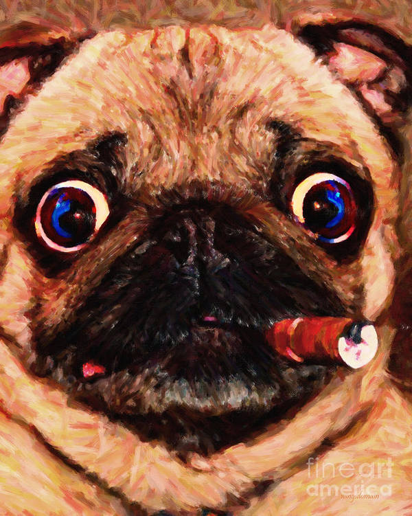 Animal Art Print featuring the photograph Cigar Puffing Pug - Painterly by Wingsdomain Art and Photography