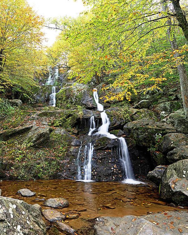 Metro Art Print featuring the photograph Dark Hollow Falls by Metro DC Photography