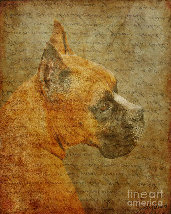 Dog Art Print featuring the digital art Do You Remember Me? by Judy Wood