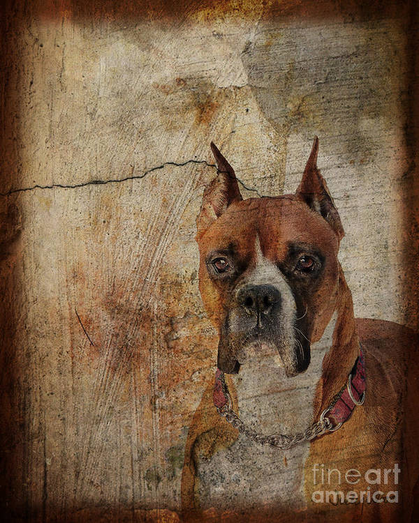 Dog Art Print featuring the digital art Falling Through The Cracks by Judy Wood