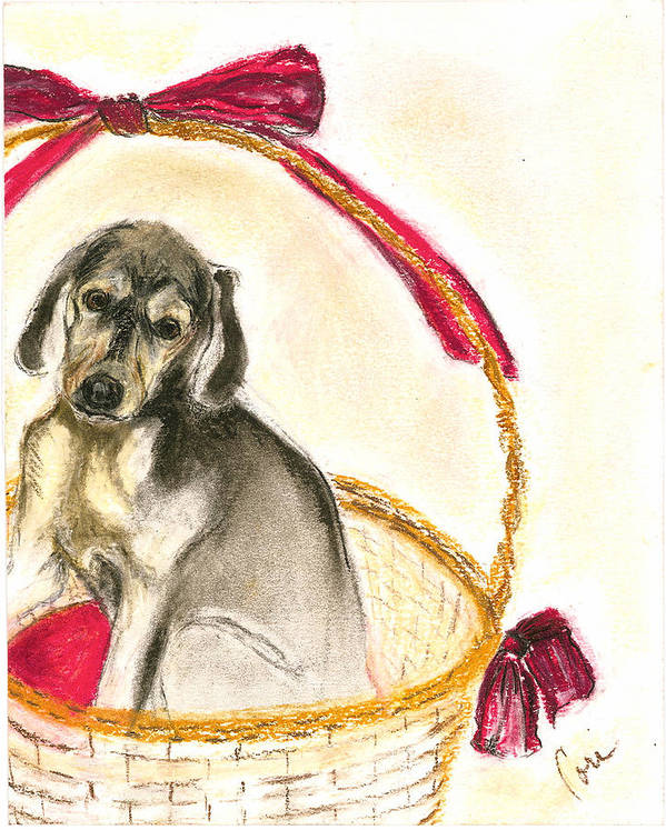 Dog Art Print featuring the drawing Gift Basket by Cori Solomon