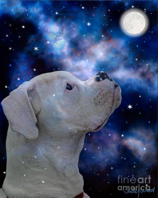 Dog Art Print featuring the digital art I See The Moon by Judy Wood