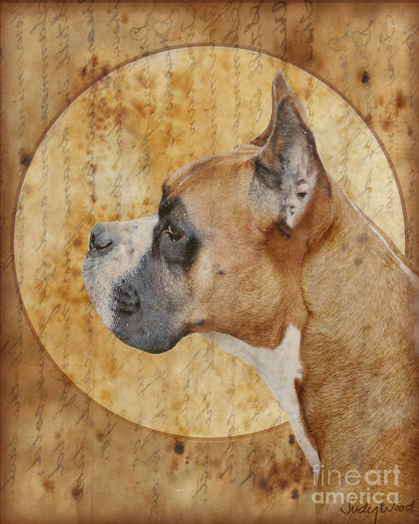 Dog Print featuring the digital art Icon by Judy Wood