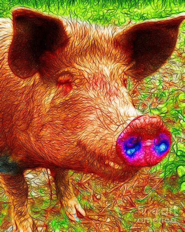 Animal Art Print featuring the photograph Little Miss Piggy - 2013-0108 by Wingsdomain Art and Photography