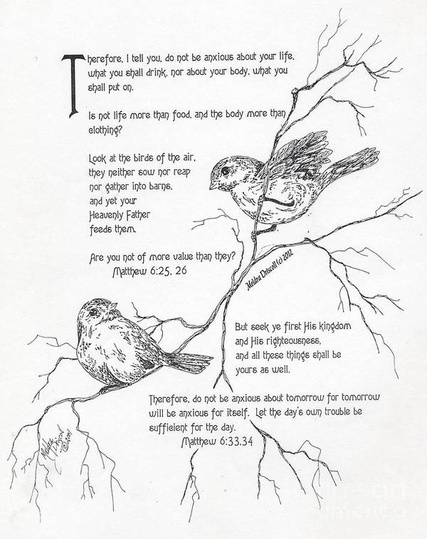 Scripture Art Art Print featuring the drawing More Important Than Birds by Meldra Driscoll