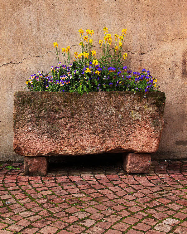 Flowers Art Print featuring the photograph Old Stone Trough And Flowers In Alsace France by Greg Matchick