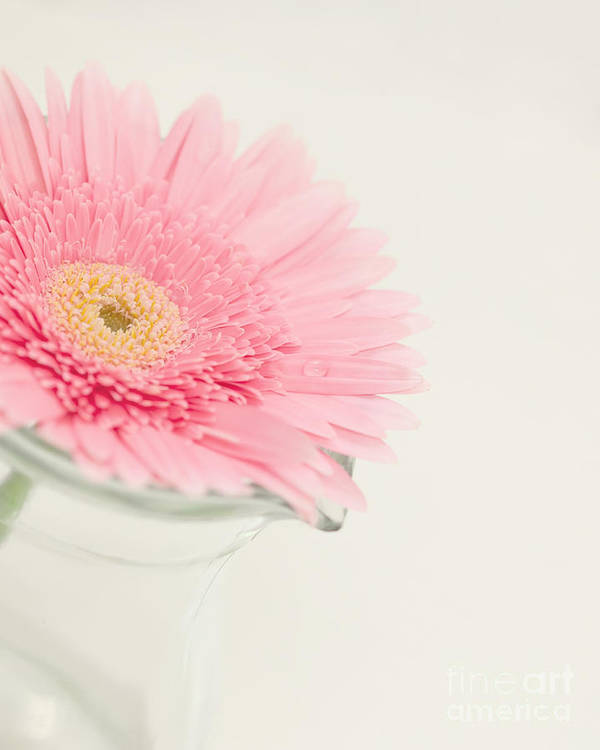 Flower Art Print featuring the photograph One Single Drop by Kay Pickens