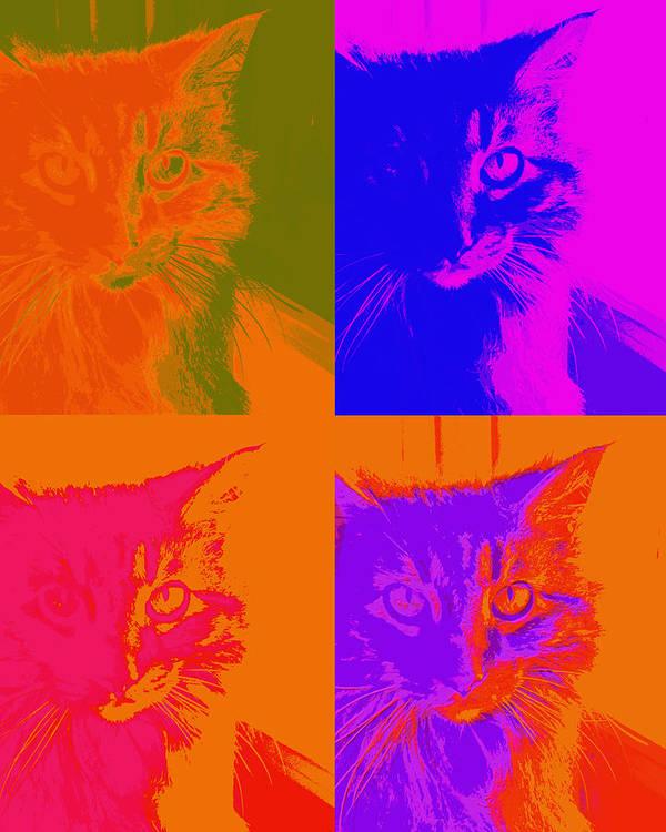 Cat Print featuring the photograph Pop Art Cat by Ann Powell