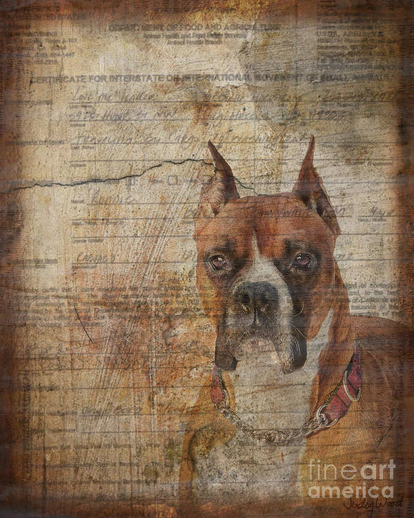 Dog Art Print featuring the digital art Rescued by Judy Wood