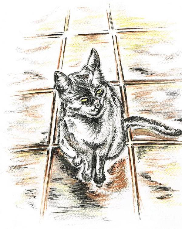 Teresa White Art Print featuring the drawing Spanish Cat Waiting by Teresa White