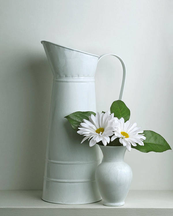 Art Print featuring the photograph Still Life With Daisy Flowers by Krasimir Tolev