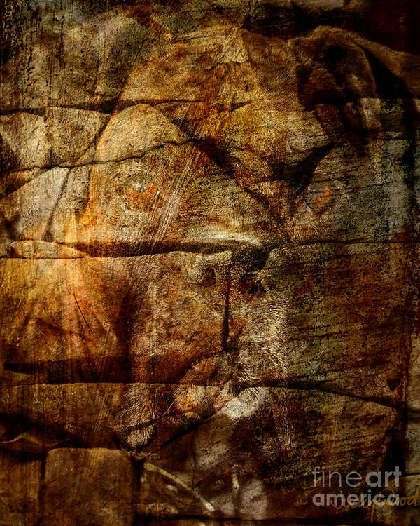 Dog Art Print featuring the digital art Stone Wall by Judy Wood