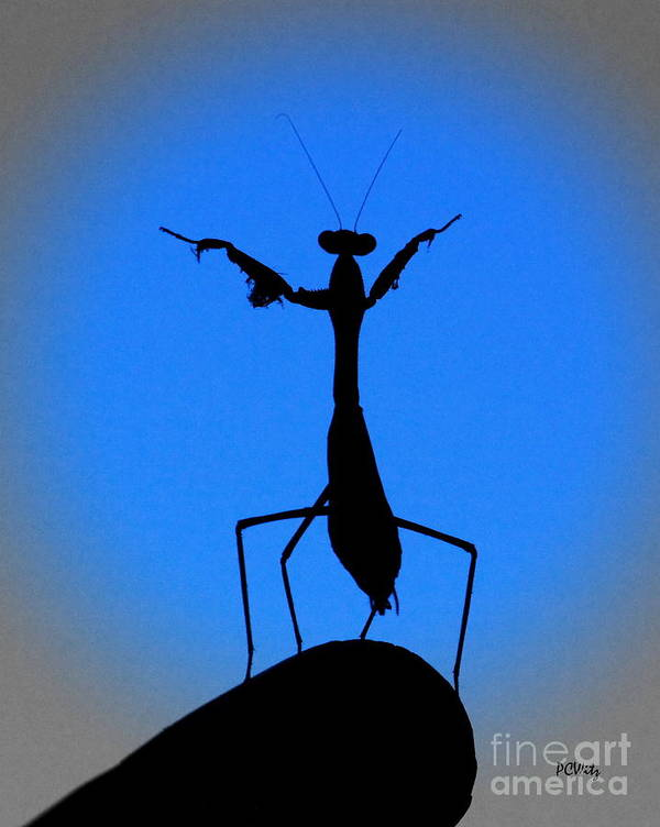 Conductor Art Print featuring the photograph The Conductor by Patrick Witz