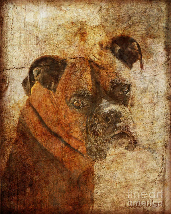 Dog Art Print featuring the digital art The Question by Judy Wood