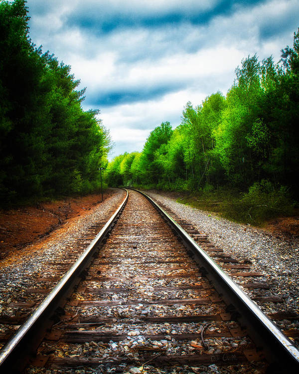 Landscape Art Print featuring the photograph Tracks Through The Woods by Bob Orsillo