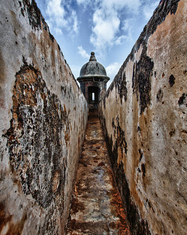 Puerto Rico Art Print featuring the photograph Tunnel by Giovanni Arroyo