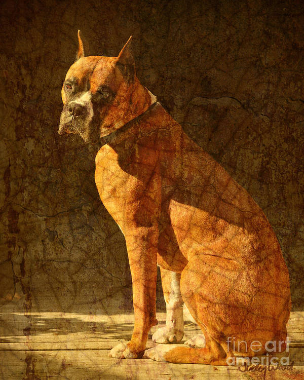 Dog Art Print featuring the digital art Vermeer's Dog by Judy Wood